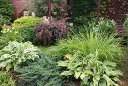 Садово-огородный дизайн  - Страница 5 Post-20095-1413951170_thumb