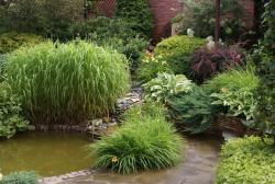 Садово-огородный дизайн  - Страница 5 Post-20095-1413951178_thumb