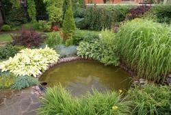 Садово-огородный дизайн  - Страница 5 Post-20095-1413956013_thumb